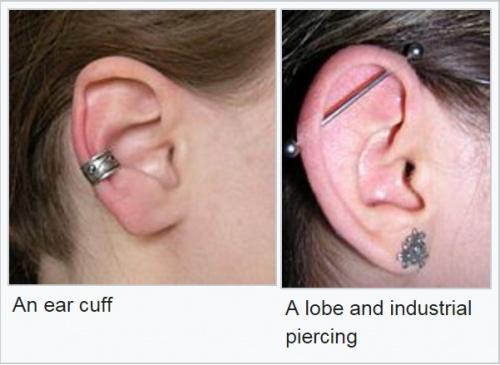 Close Gauged Ears Kipkis